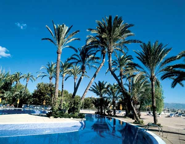 Telefono Hotel Valparaiso Palma Mallorca